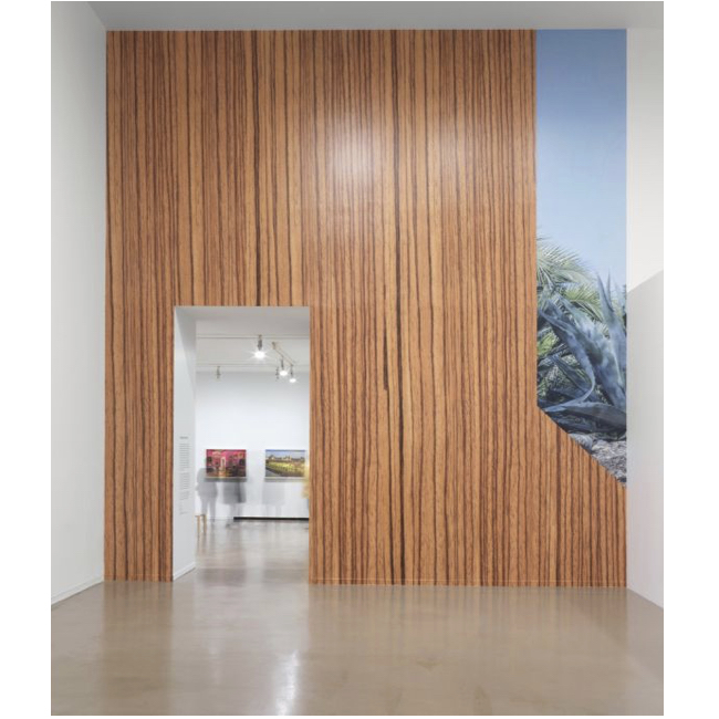 A Look Back – Vikky Alexander: Extreme Beauty at the Vancouver Art Gallery